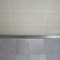 3395 Quick Drain Proline Linear Shower W Brushed Finish Cover