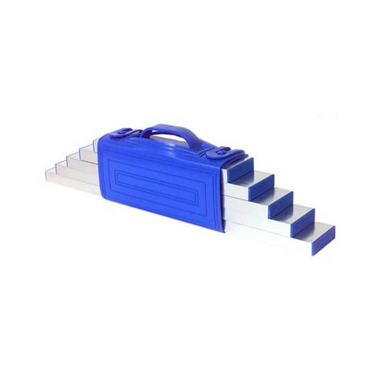 Barwalt 5 Piece Straight Edge Set with Carrying Handle
