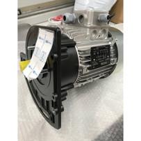 P297IN85D60 Raimondi Zipper Motor 120V. 60Hz