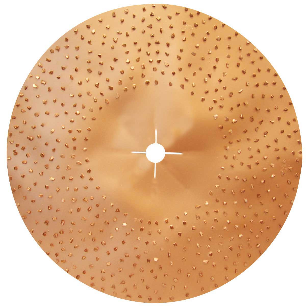 Raimondi Double Sided floor disc