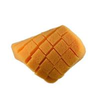 SPCSXLSP Raimondi XL Cross-Slit Sponges